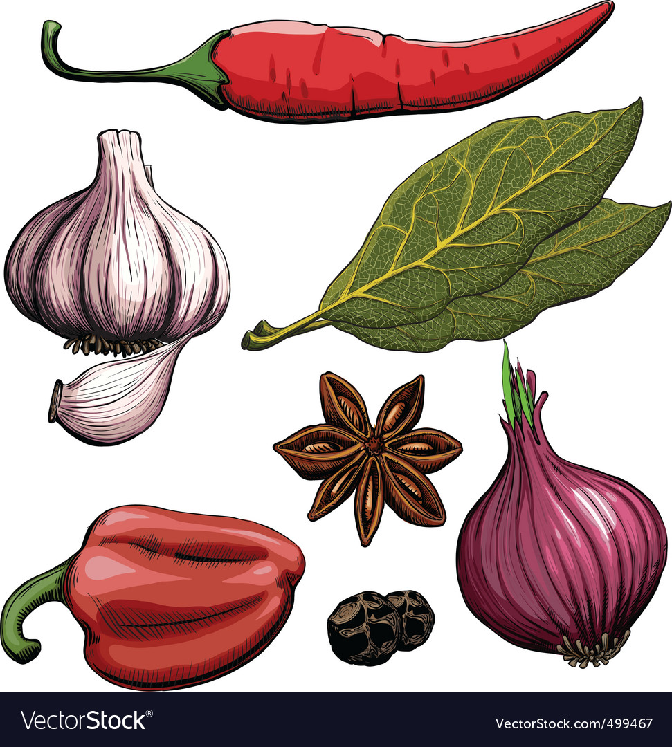 Cooking spices vector | Price: 3 Credit (USD $3)