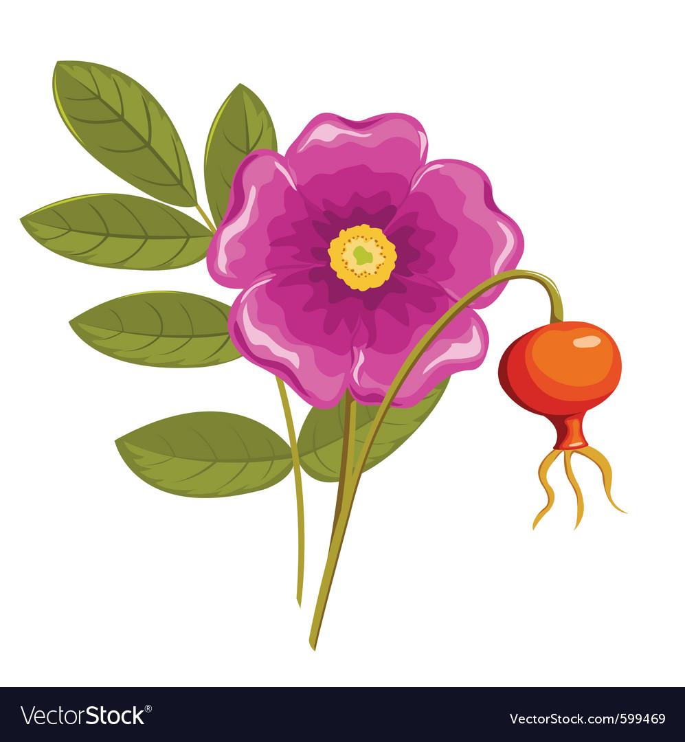 Cartoon flowers vector | Price: 1 Credit (USD $1)