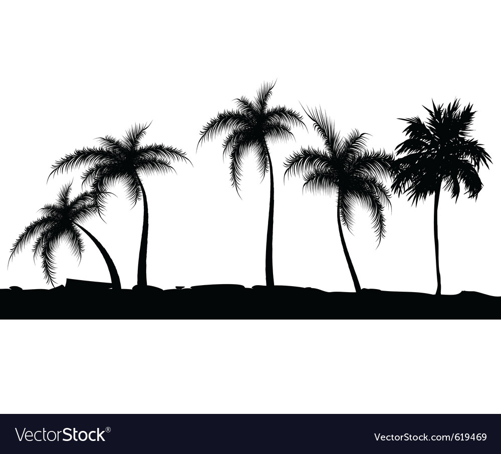 Summer background with palm trees vector | Price: 1 Credit (USD $1)