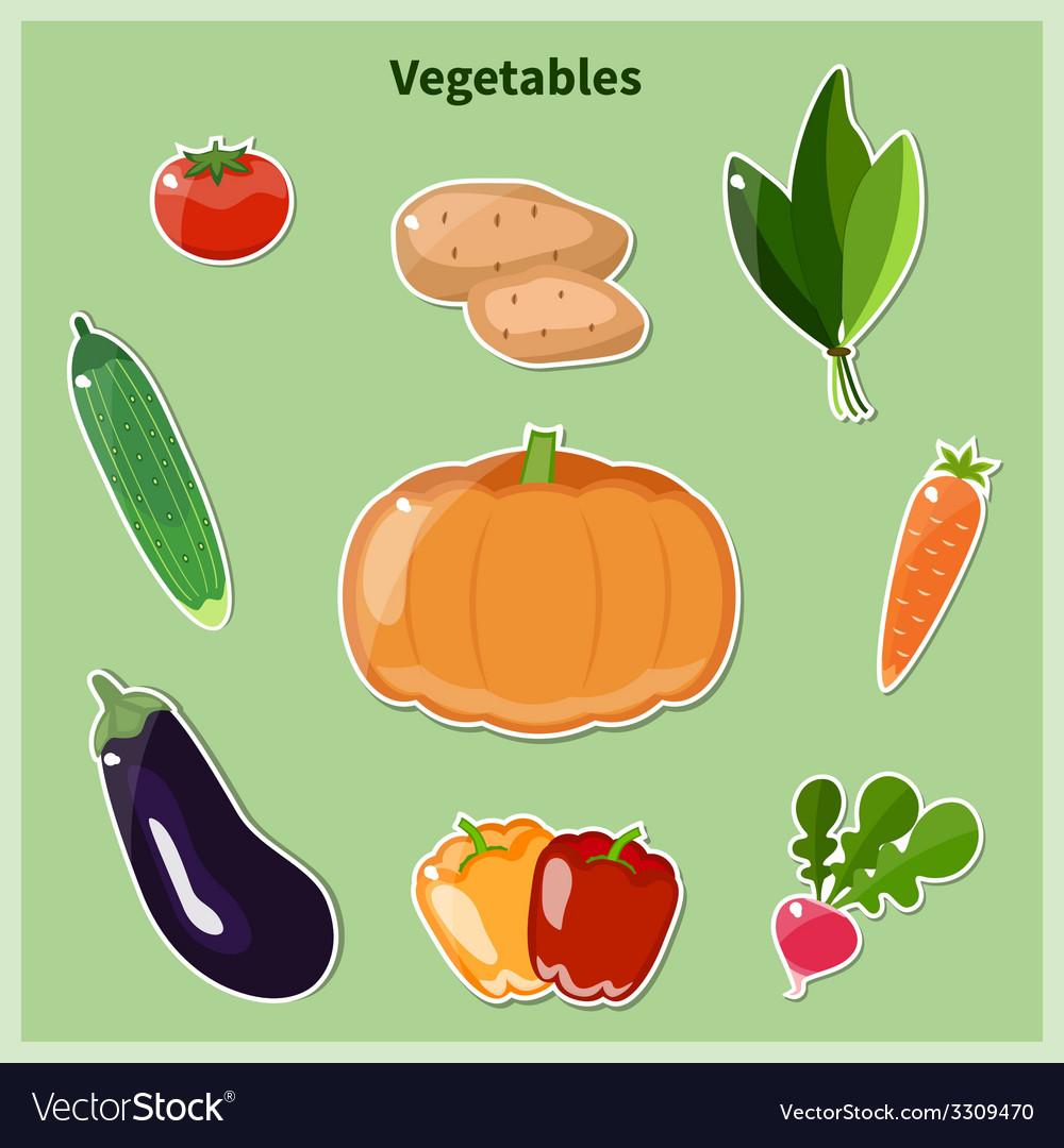 Vegetables vector | Price: 1 Credit (USD $1)
