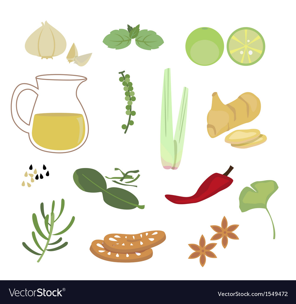 Herb vector | Price: 1 Credit (USD $1)