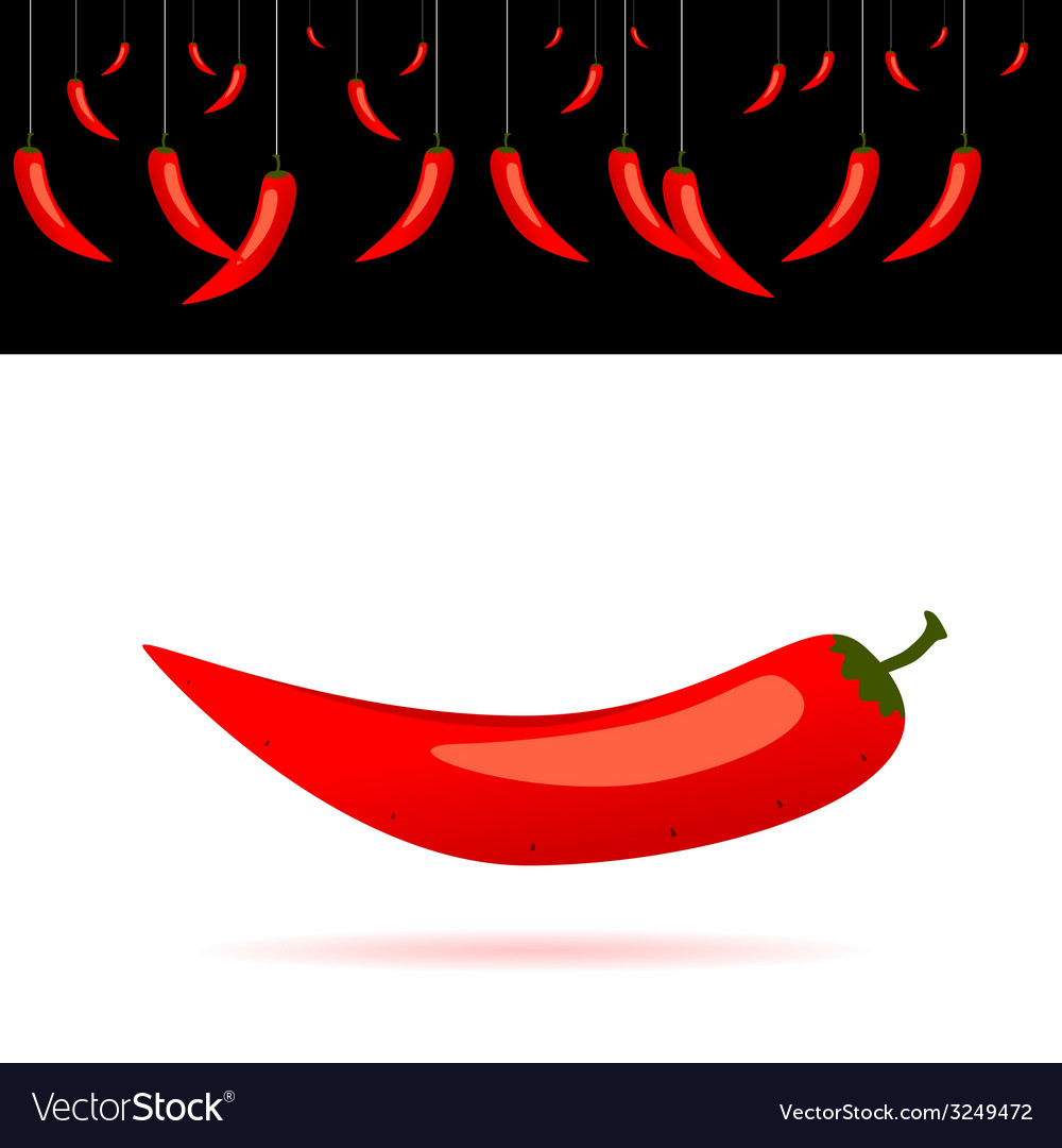 Red chili peppers vector | Price: 1 Credit (USD $1)
