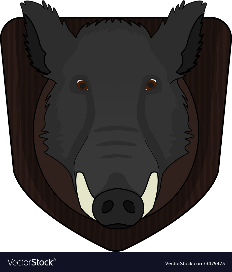 Stuffed taxidermy wild boar head vector | Price: 1 Credit (USD $1)