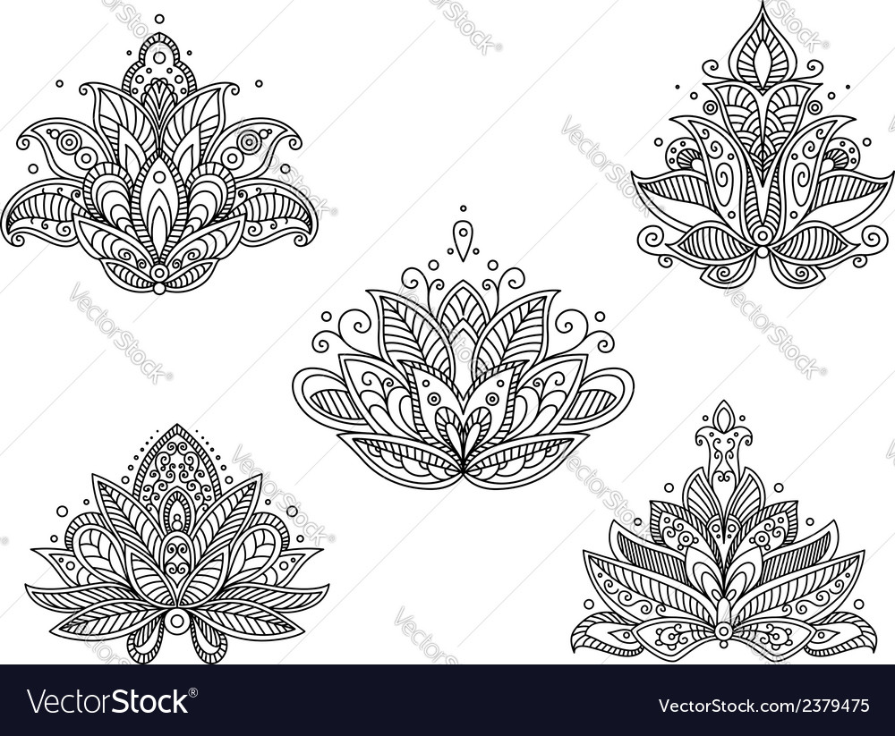 Set of persian paisley flowers vector | Price: 1 Credit (USD $1)