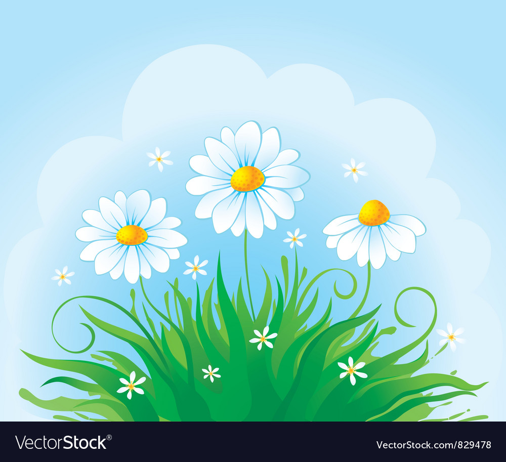 Summer background with daisy vector | Price: 1 Credit (USD $1)