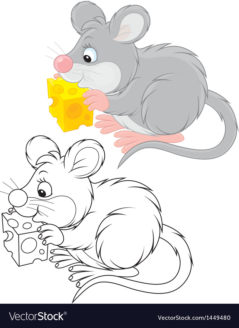 Mouse vector | Price: 1 Credit (USD $1)