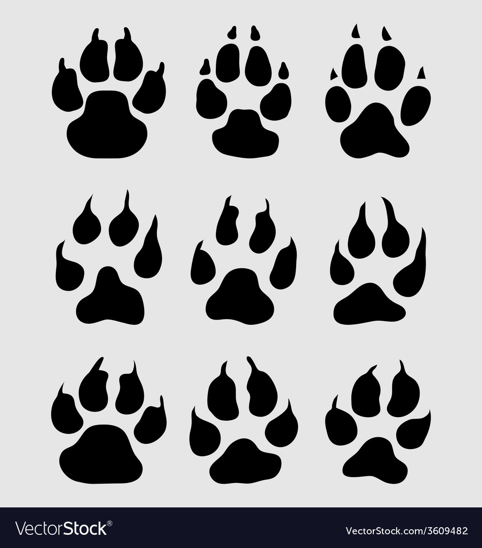 Print of paw vector   Price: 1 Credit (USD $1)