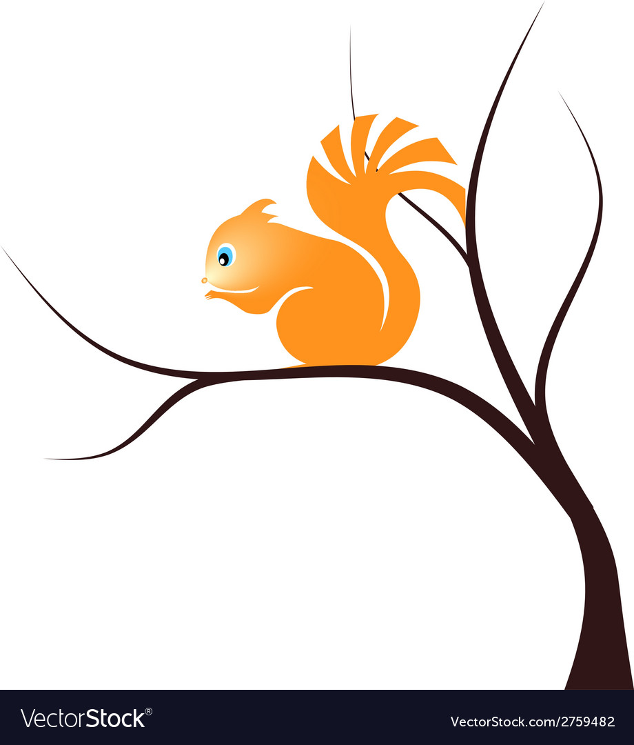 Squirrel vector | Price: 1 Credit (USD $1)