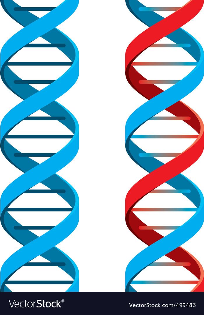 Dna symbol vector | Price: 3 Credit (USD $3)