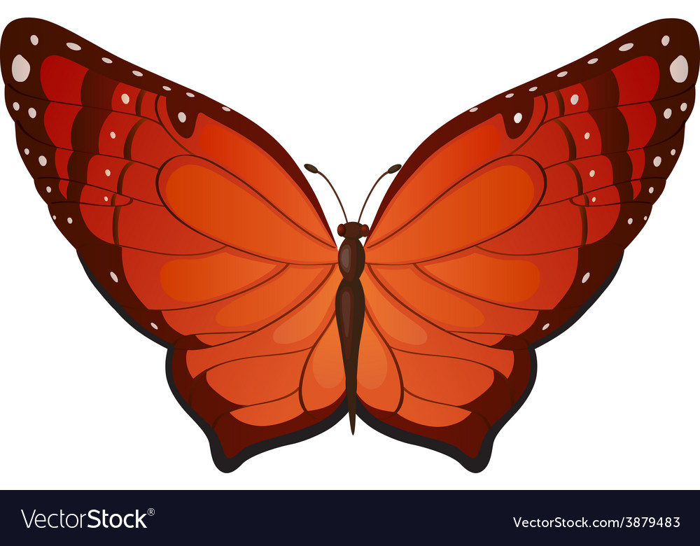 Red butterflies vector | Price: 1 Credit (USD $1)
