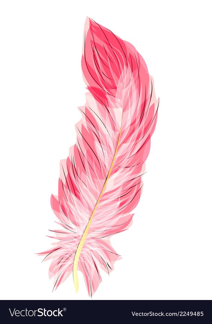Flamingo feather vector | Price: 1 Credit (USD $1)
