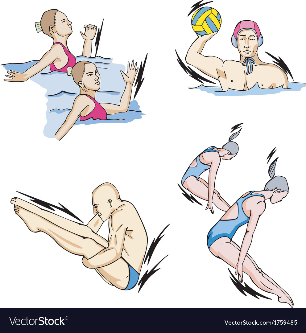 Synchronized swimming water polo and diving vector | Price: 1 Credit (USD $1)