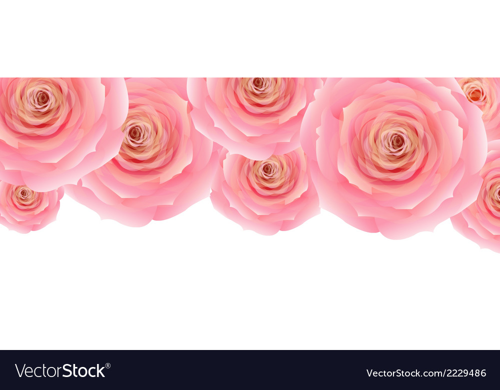 Pastel pink rose vector | Price: 1 Credit (USD $1)