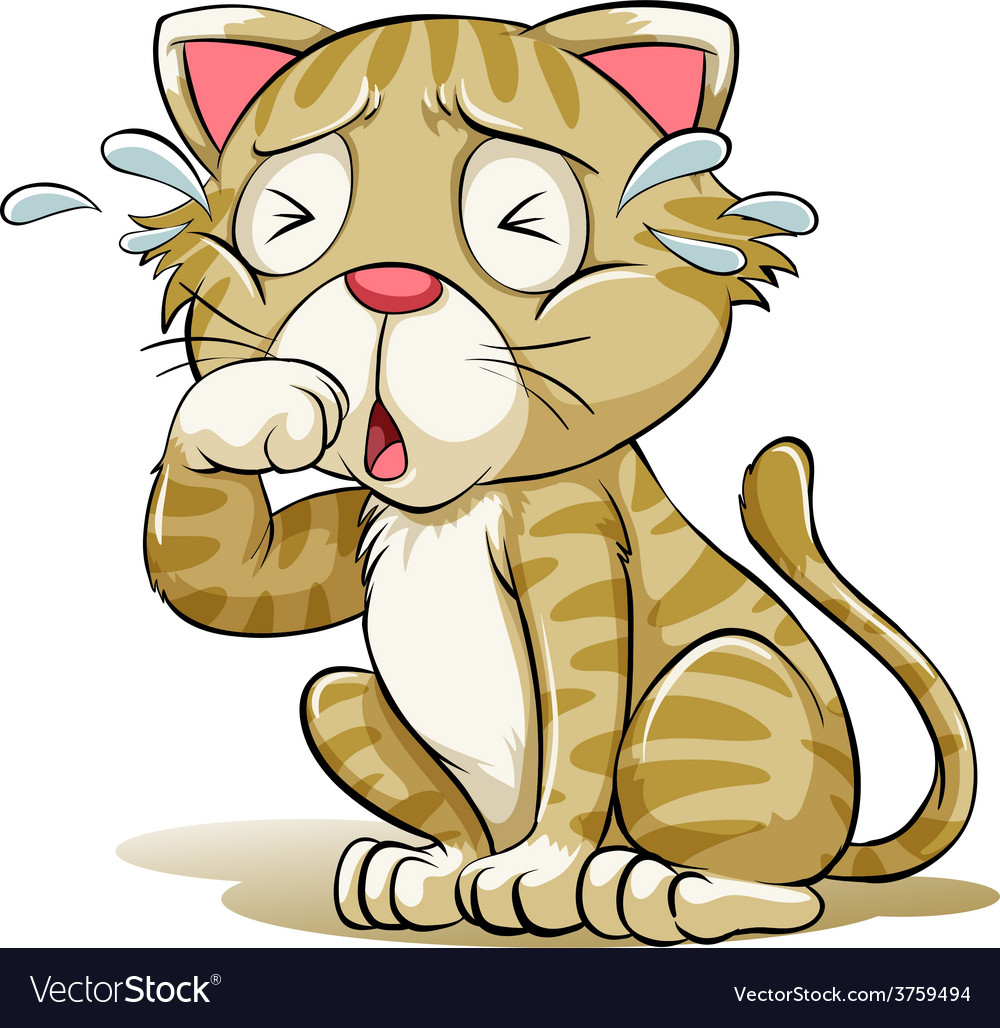 A crying cat vector   Price: 1 Credit (USD $1)