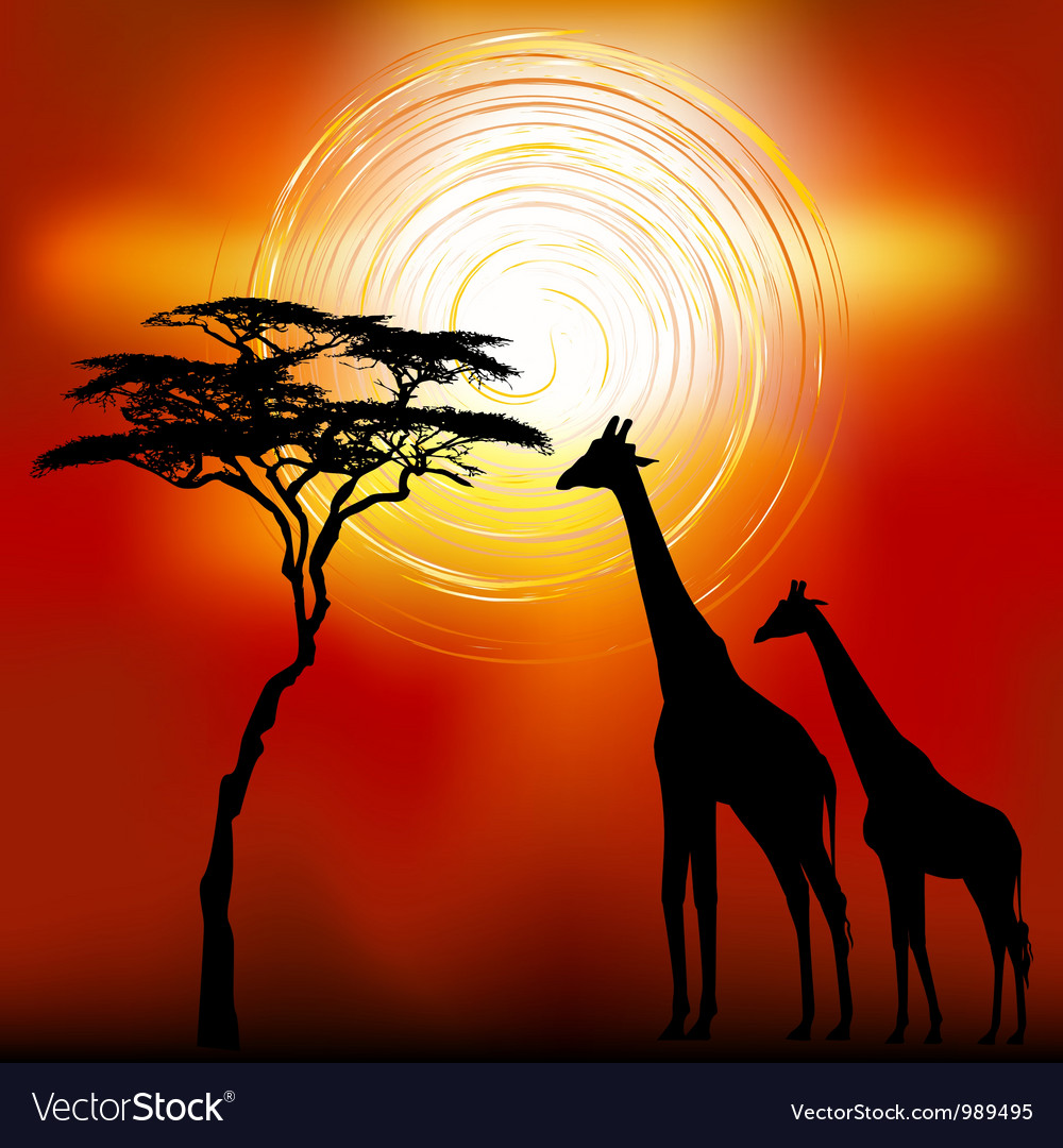 African landscape vector