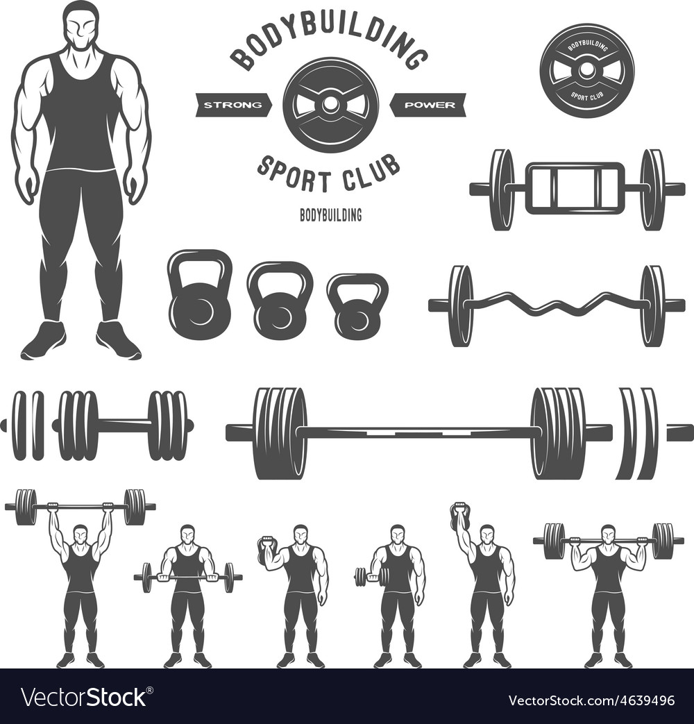 Equipment for bodybuilding and exercise vector | Price: 1 Credit (USD $1)