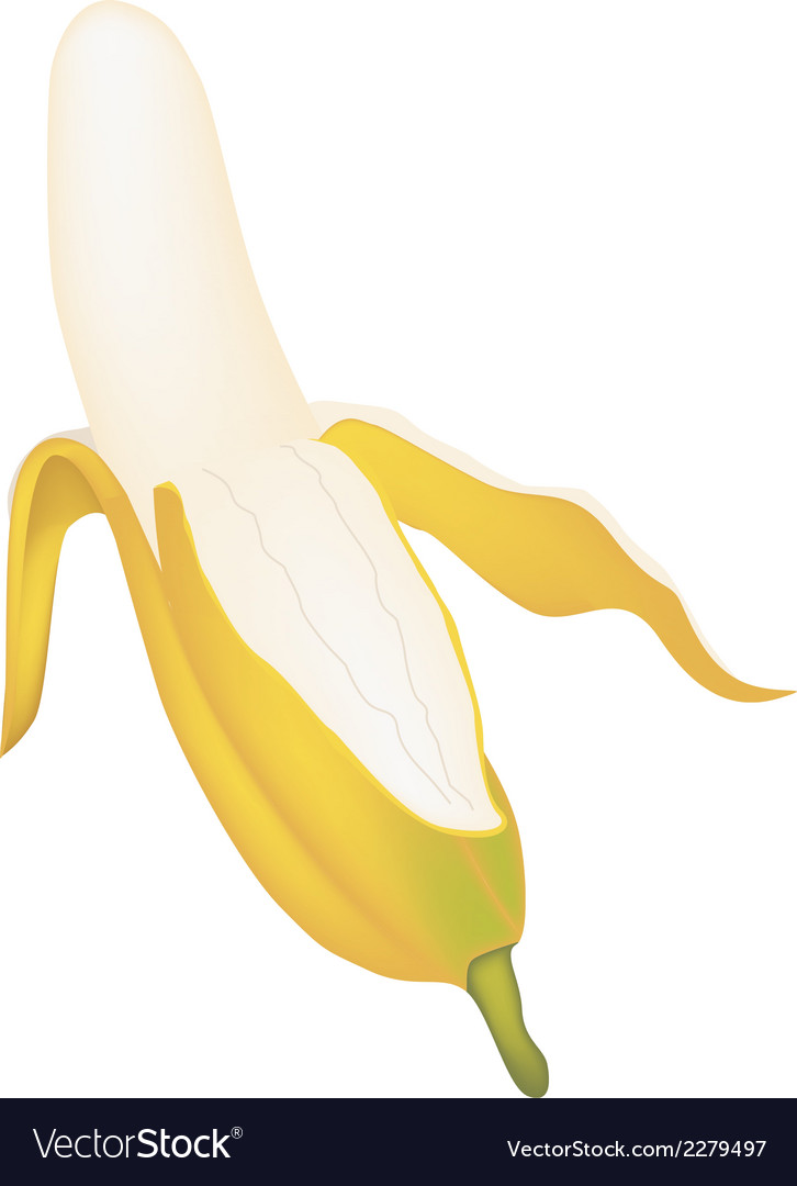 Open ripe asian banana on white background vector | Price: 1 Credit (USD $1)