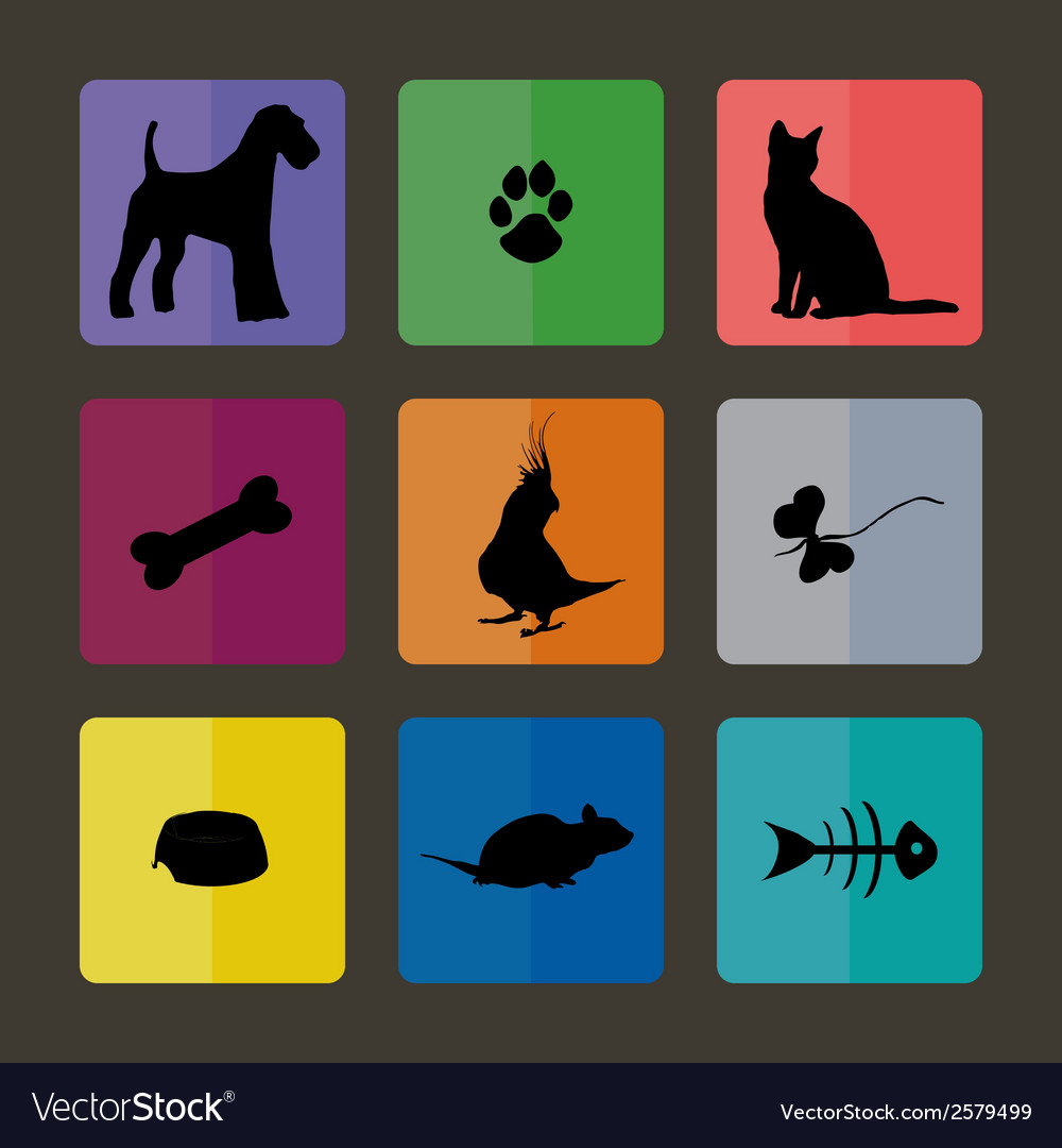 Veterinary icons with pets vector | Price: 1 Credit (USD $1)