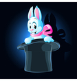 Magic rabbit vector