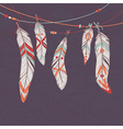 Colorful set of ethnic decorative feathers hanging vector
