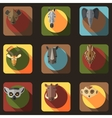 Animal portrait set with flat design vector