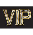 Vip badge vector