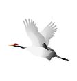 Icon bird crane vector