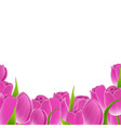 Frame of pink tulips vector
