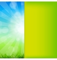Summer abstract background with grass and vector