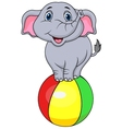 Cute elephant cartoon standing on a colorful ball vector
