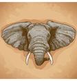 Engraving elephant head retro vector