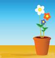 Pot flowers vector