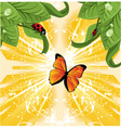Butterfly nature vector