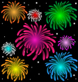 Colorful fireworks over the night vector