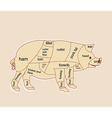 Pork chart vector