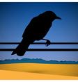 Bird silhouette with abstract desert scene on vector