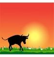 Bull silhouette on sunset vector