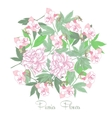 Flowers and white pink peonies vector