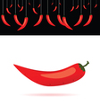 Red chili peppers vector