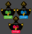 Wine labels13 vector
