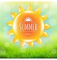 Summer time poster with grass vector