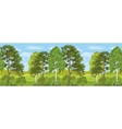 Seamless horizontal landscape summer forest vector