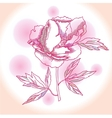 One pink peony vector