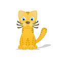 Cartoon tiger cat with shadow vector