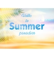 Summer calligraphic design vector