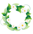 Daisies with green leaves vector