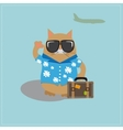 Cat tourist wearing sunglasses and a shirt with vector