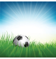 Football soccer ball nestled in grass vector