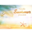 Summer calligraphic designs vector