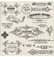 Page decoration vintage frame collection vector